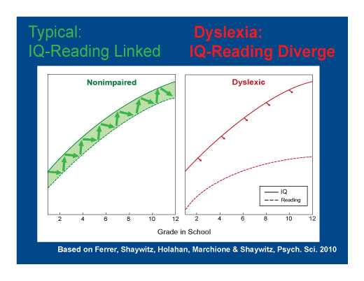 Dyslexia not linked to IQ