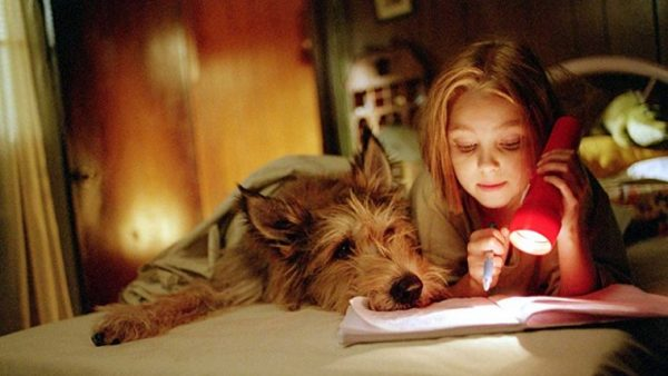 The ABCs of DOGs: children learning to read with dogs